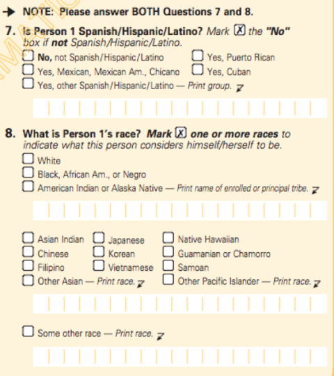 2000 U.S. Census Race Section